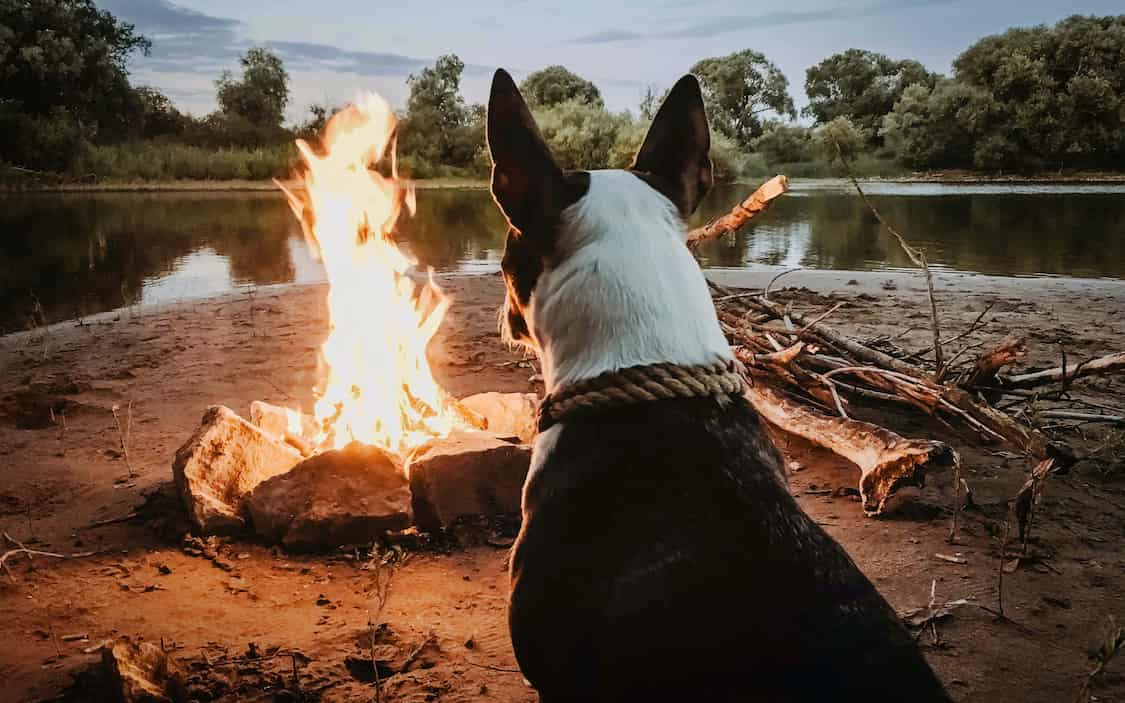 A real campfire, is that still ecologically justified? At ETIKL Magazine we investigated whether there is a worthy, ecological alternative to the classic campfire. And yes, we found one.